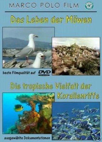 Lebensraum Korallenriff (verschiedene Filme) -- via Amazon Partnerprogramm