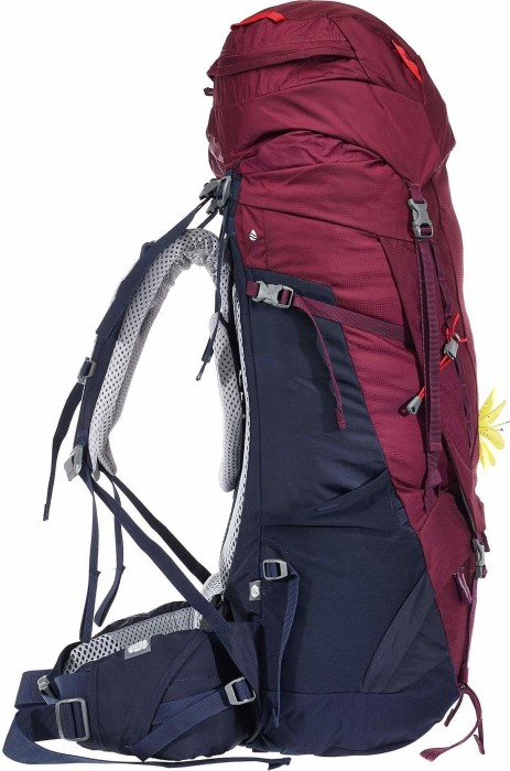 58d97549cc333 Deuter Aircontact 50+10 SL blackberry navy (Damen) (3320219-5326)