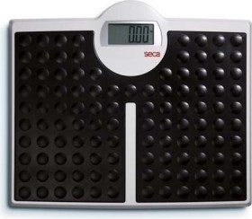 seca 813 robusta electronic personal scale
