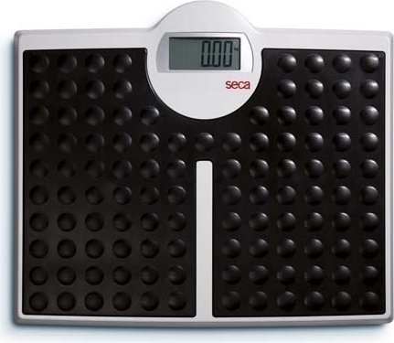 seca 813 robusta electronic personal scale -- via Amazon Partnerprogramm