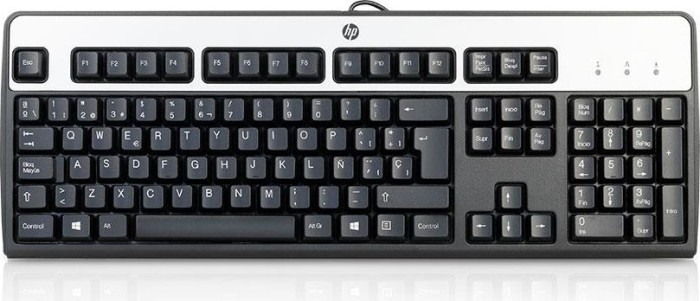 HP Standard Basis Keyboard, USB (DT528Axxx) (verschiedene Layouts)