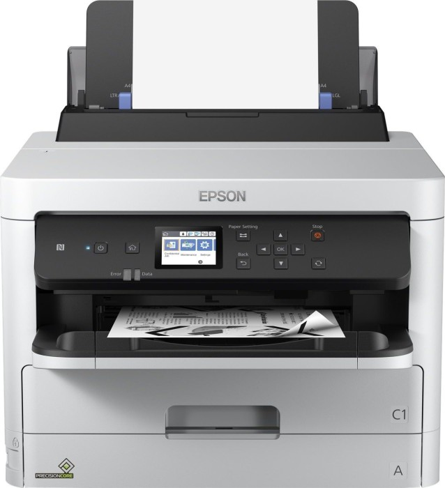 Epson WorkForce Pro WF-M5298DW ink (C11CG08401)