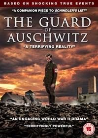 The Guard (DVD) (UK)