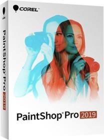 Corel Paint Shop Pro 2019 (multilingual) (PC) (PSP2019MLMBEU)