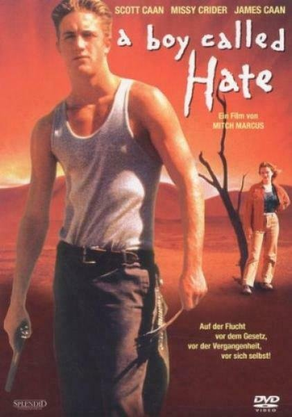 A Boy called Hate -- via Amazon Partnerprogramm