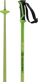 Salomon Arctic alpine ski stick green (model 2018/2019) (405589)