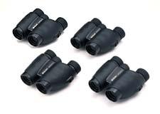 Nikon Travelite V 10x25 CF