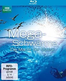 BBC: Megaschwärme - Die Macht der Masse (Blu-ray)