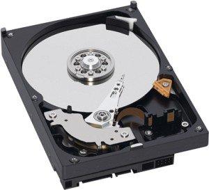 Western Digital WD Caviar Blue 160GB, 8MB cache, SATA 3Gb/s (WD1600AAJS)