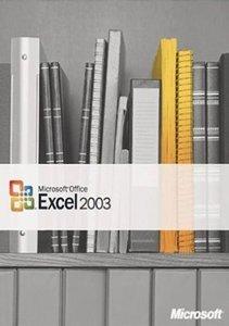 Microsoft: Excel 2003 (englisch) (PC) (065-03866)