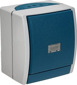 Busch-Jaeger Ocean Wippschalter, grau/blaugrün (2601/6 WGL-53)