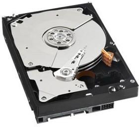 Western Digital WD RE4 1TB, SATA 3Gb/s (WD1003FBYX)