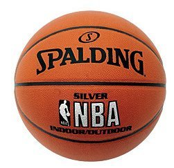 Spalding NBA Silver Indoor/Outdoor Basketball (3001591010017)