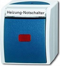 Busch-Jaeger Ocean Wippkontrollschalter, grau/blaugrün (2601/2 SKWNH-53)