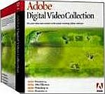Adobe: Digital Video Collection 8.0 (MAC) (19210094)