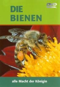 Die Bienen - Alle Macht der Königin (DVD)