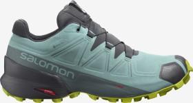Salomon Speedcross 5 GTX pastel turquoise/ebony/evening primrose (Damen) (413829)