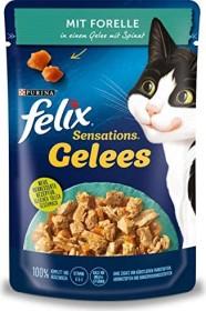 Felix Sensations Gelees mit Forelle und Spinat 2.04kg (24x 85g)