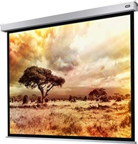 Celexon electric Professional Plus 220x165cm