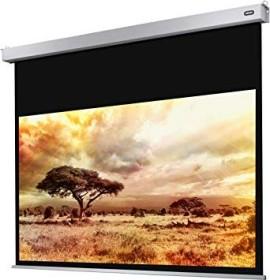 Celexon electric Professional Plus 300x169cm