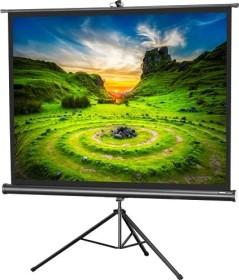 Celexon stand screen Economy 244x183cm (1090021)