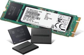 Samsung SSD PM871b 256GB, M.2 (MZNLN256HAJQ-00000)