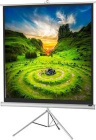 Celexon stand screen Economy white Edition 219x219cm (1090271)
