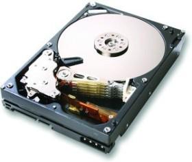 HGST Ultrastar A7K1000 500GB, SATA 3Gb/s (HUA721050KLA330)
