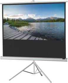 Celexon stand screen Economy white Edition 184x104cm (1090270)