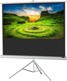 Celexon stand screen Economy white Edition 244x138cm (1090276)