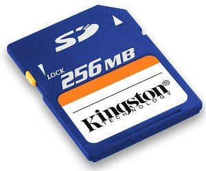 Kingston SD Card 256MB (SD/256)