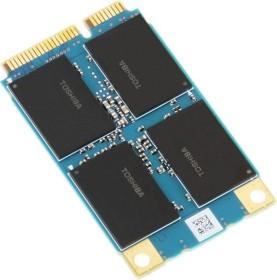 KIOXIA HG6k 256GB, mSATA (THNSNJ256WMCU)