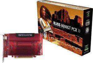 Gainward BLISS GeForce 8600 GT SilentFX, 256MB DDR3, 2x DVI, TV-out (8491)