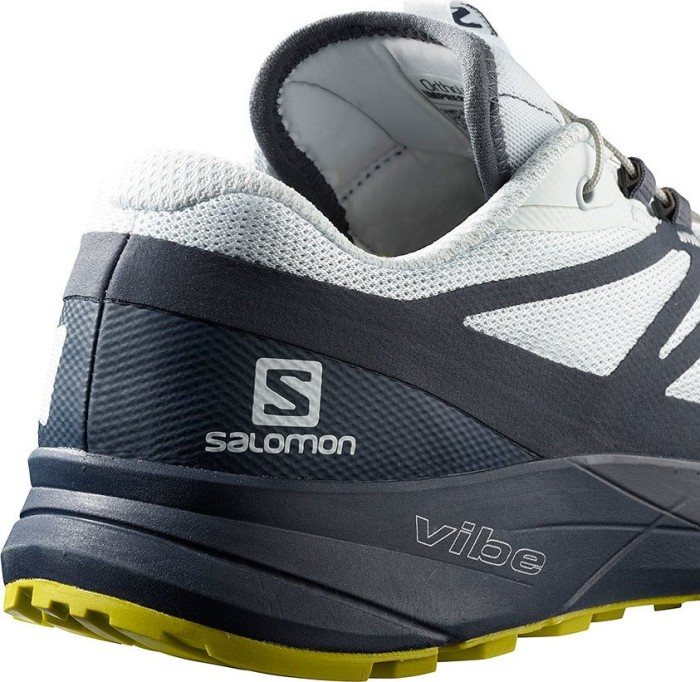 Salomon Sense Ride 2 Herren Laufschuh in grau sichern