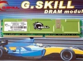 G.Skill Value DIMM 1GB, DDR2-800, CL5-5-5-15 (F2-6400PHU1-1GBNR)