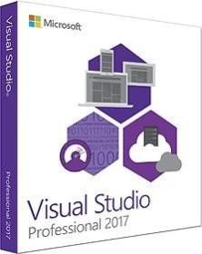Microsoft Visual Studio 2017 Professional, ESD (multilingual) (PC)