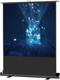 Celexon Pull-Up screen ultra mobile Plus Professional 120x120cm (1090369)