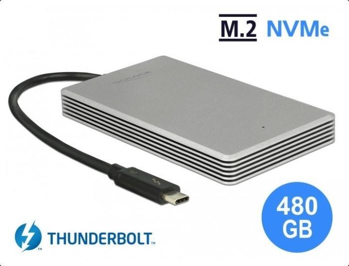 DeLOCK external portable M.2 PCIe NVMe SSD 480GB, Thunderbolt 3 (54007)