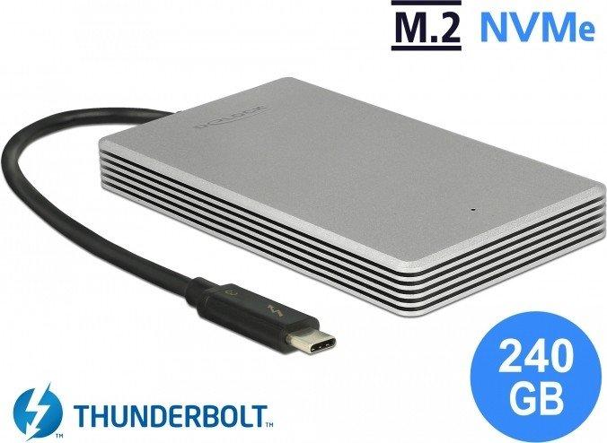 DeLOCK external portable M.2 PCIe NVMe SSD 240GB, Thunderbolt 3 (54000)