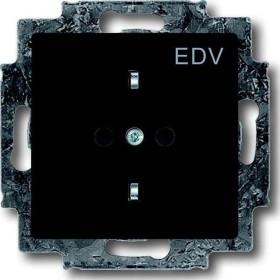Busch-Jaeger Future Linear Steckdosen-Einsatz mit Aufdruck EDV, anthrazit (20 EUCKS/DV-81)