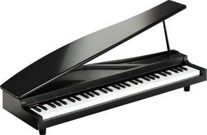 Korg microPIANO digital piano black