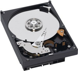 Western Digital AV-GP 2500GB, SATA II (WD25EURS)