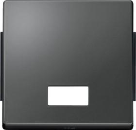 Merten Aquadesign Wippe, anthrazit (343814)