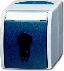 Busch-Jaeger Ocean Schlüsselschalter 1-polig, grau/blaugrün (2733 SLW-53)