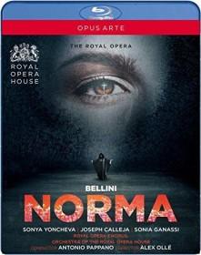 Vincenzo Bellini - Norma (Blu-ray)