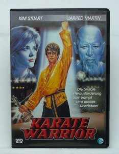 Karate Warrior -- © bepixelung.org