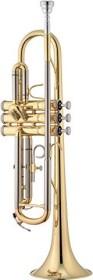 Jupiter Trumpet (various types)