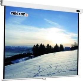 Celexon pull-down Professional 240x240cm