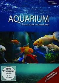 Ambiente: Aquarium Impressionen