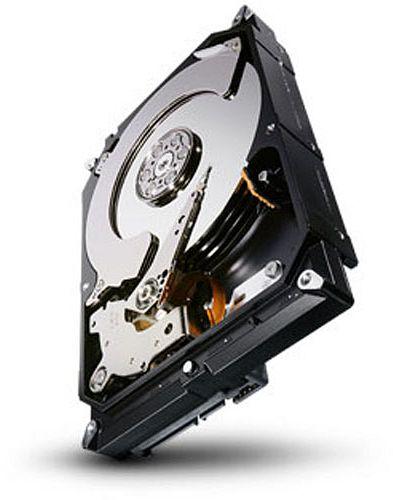 Seagate Terascale 4TB, SATA 6Gb/s (ST4000NC001)